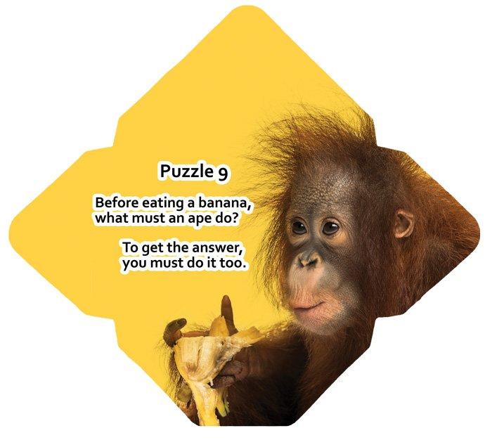 Puzzle-9---front