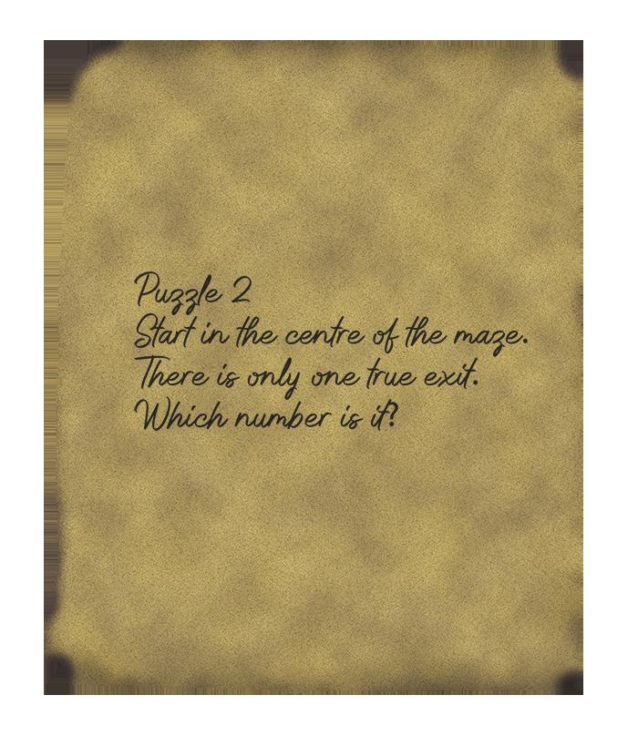 puzzle-2---maze-back